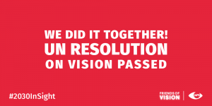 Red graphic reading We Did It Together! UN Resolution on Vision Passed